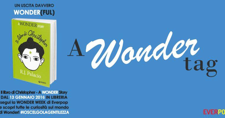 A WONDER TAG | Book Tag!